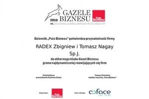2019 // Gazele Biznesu 2019